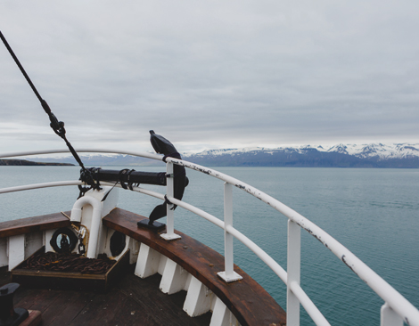The view off the front of a boat, looking at Iceland's pristine coastline